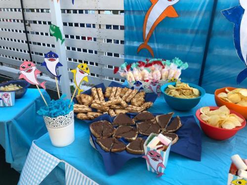 festa_saluto_estiva (10)